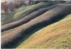 春風の丘-2