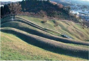 春風の丘-3