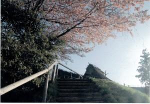 春風の丘-7