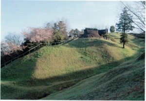春風の丘-8